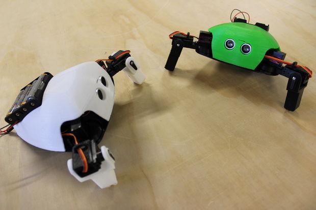 Robot armado Listo para USAR THE CRITTER 4