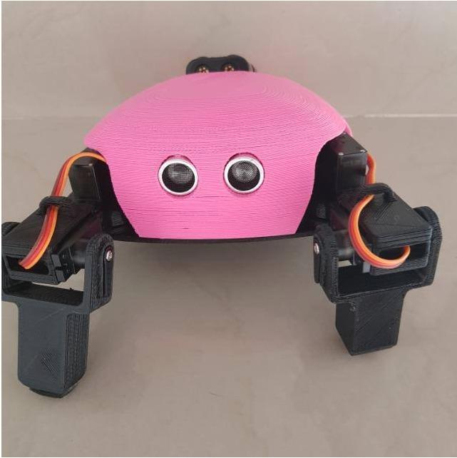 Robot armado Listo para USAR THE CRITTER 5